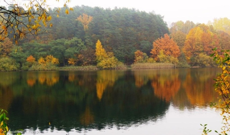 10555583_jesien-nad-jeziorem-.jpg